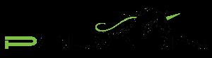Logo Paradin2